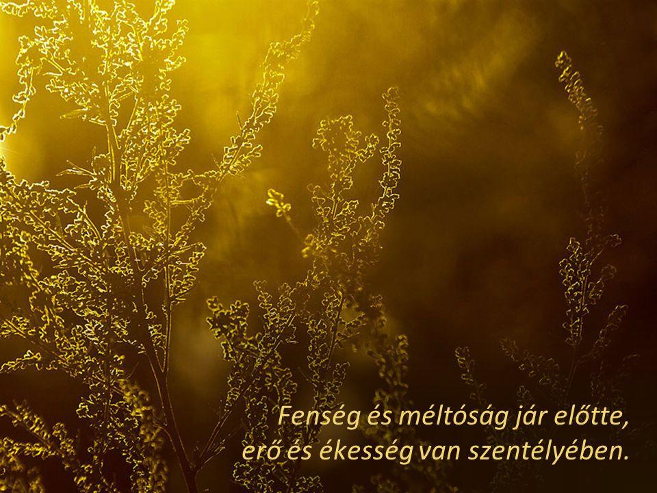 Fenség és méltóság jár előtte, erő és ékesség van szentélyében.
