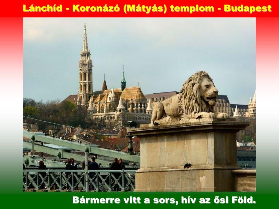 Szegény magyar, hol van haza. Országháza - Budapest