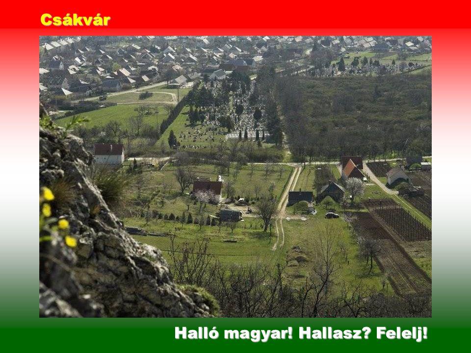 Halló magyar! Hol vagy Felelj! Zsámbék