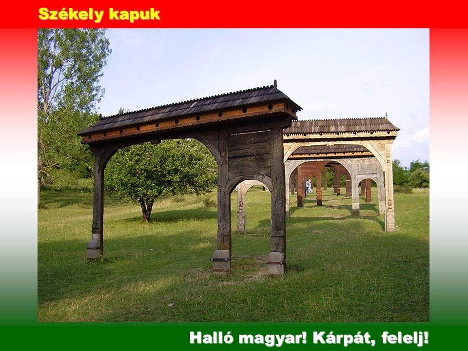 Budai vár - Budapest Zászlója még ma is, Piros Fehér Zöld!