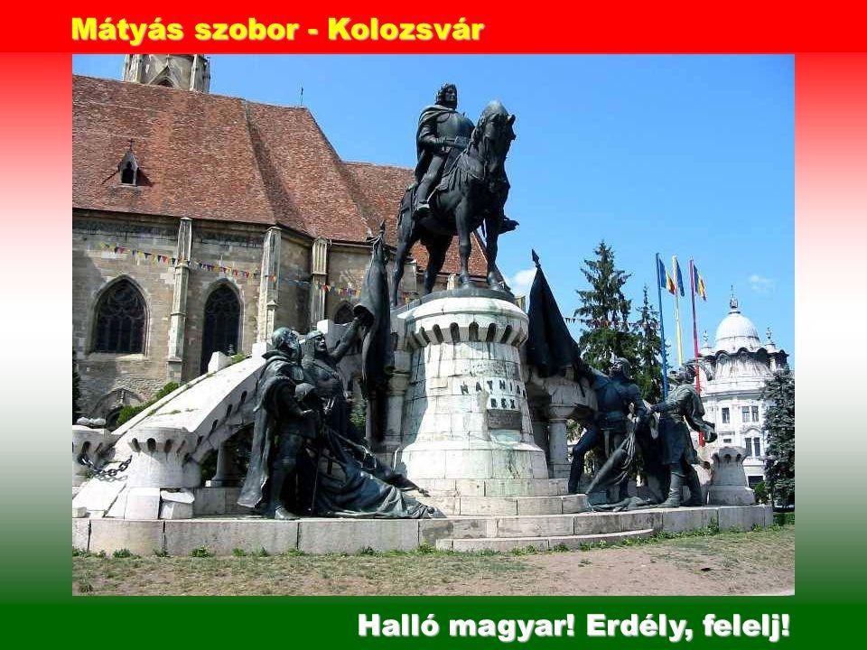 Halló magyar! Kárpát, felelj! Székely kapuk