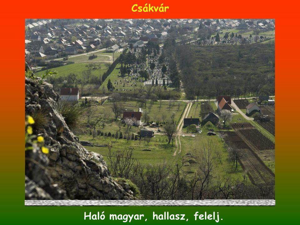 Haló magyar, hallasz, felelj. Csákvár