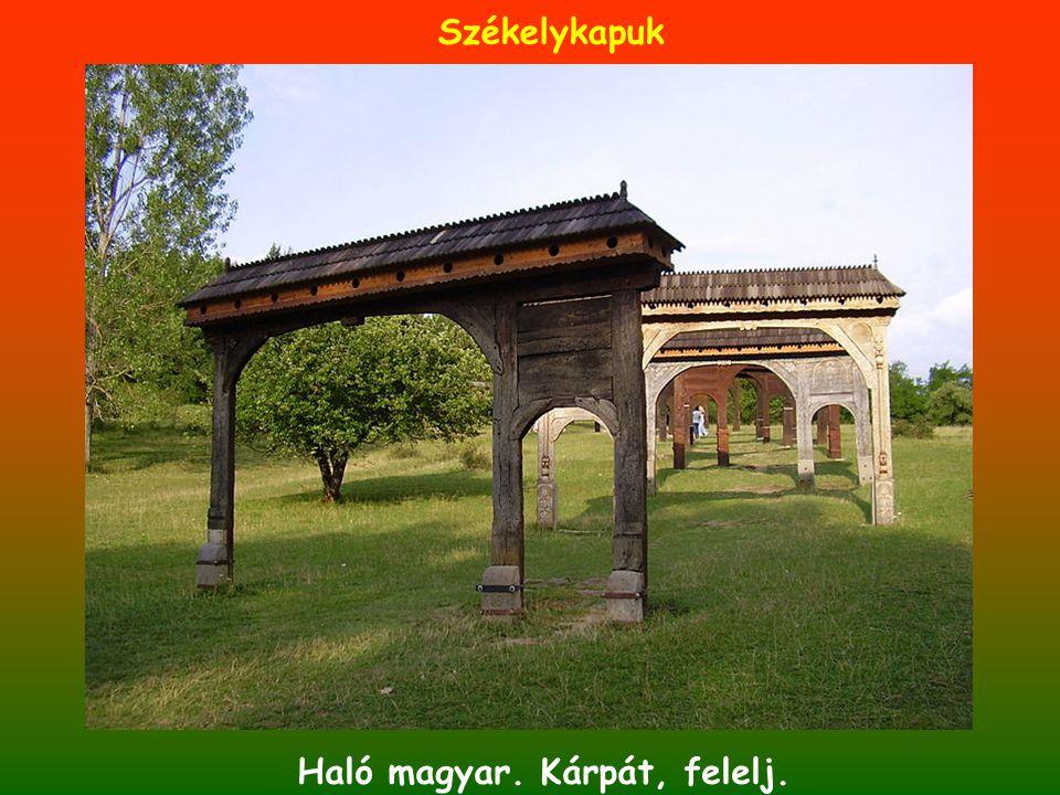 Haló magyar. Kárpát, felelj. Székelykapuk