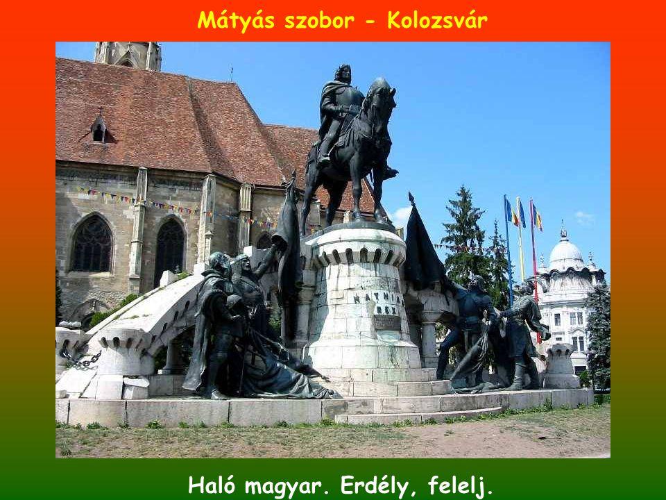 Haló magyar. Erdély, felelj. Mátyás szobor - Kolozsvár