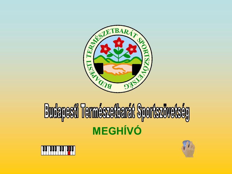 MEGHÍVÓ