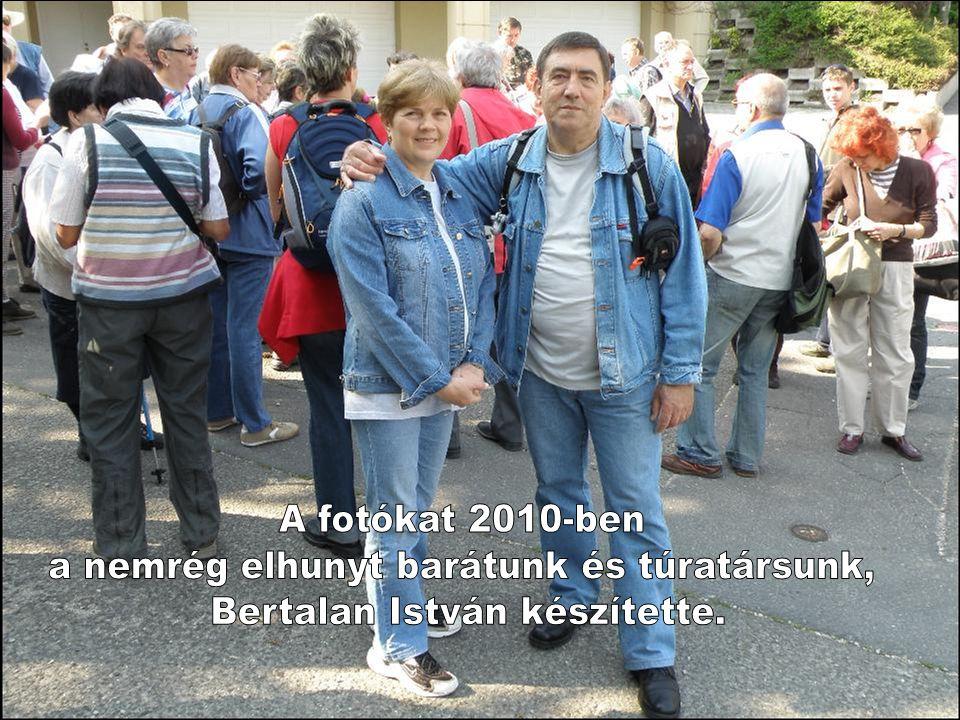 2011.Április 23. Szombat Budapest és környéke természeti értékei. Sas-hegy Föld napja Képek a 2010-évi Föld napi rendezvényünkön készültek.
