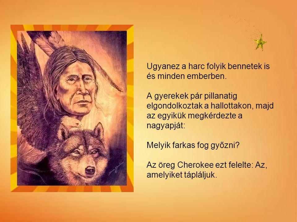 Cherokee indián tanítás Egyszer egy idősebb Cherokee bennszülött amerikai így tanította az unokáit az élet dolgairól: Harc dúl bennem. Egy szörny? Háb