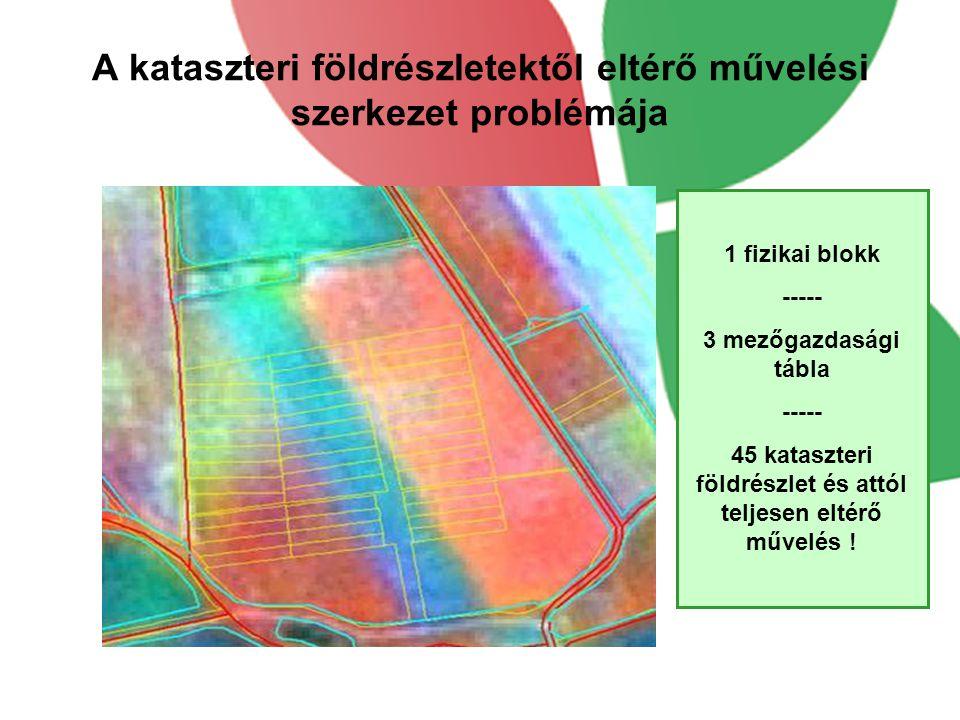 A kataszteri földrészletektől eltérő művelési szerkezet problémája 1 fizikai blokk ----- 3 mezőgazdasági tábla ----- 45 kataszteri földrészlet és attó