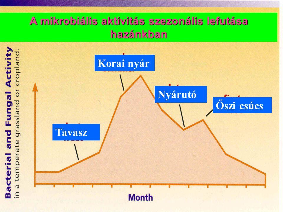 Tavasz Korai nyár Nyárutó Őszi csúcs A mikrobiális aktivitás szezonális lefutása hazánkban