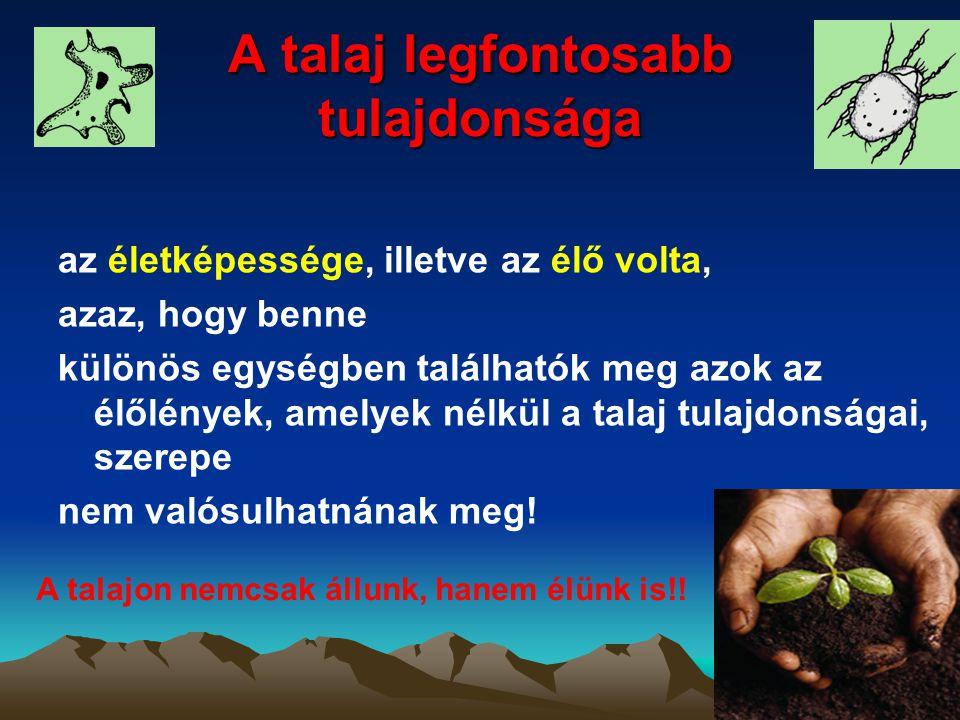 A talaj legfontosabb tulajdonsága az életképessége, illetve az élő volta, azaz, hogy benne különös egységben találhatók meg azok az élőlények, amelyek
