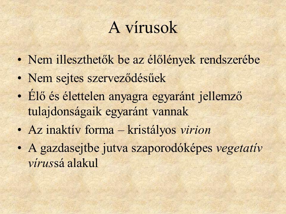 A vírusok felfedezése 1892 D.Ivanovszkij L.