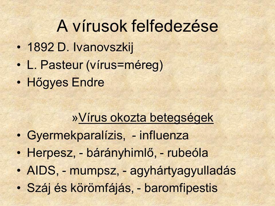 A vírusok felfedezése 1892 D. Ivanovszkij L. Pasteur (vírus=méreg) Hőgyes Endre »Vírus okozta betegségek Gyermekparalízis, - influenza Herpesz, - bárá