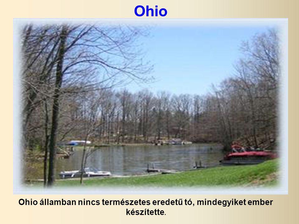 Ohio Ohio államban nincs természetes eredetű tó, mindegyiket ember készítette.