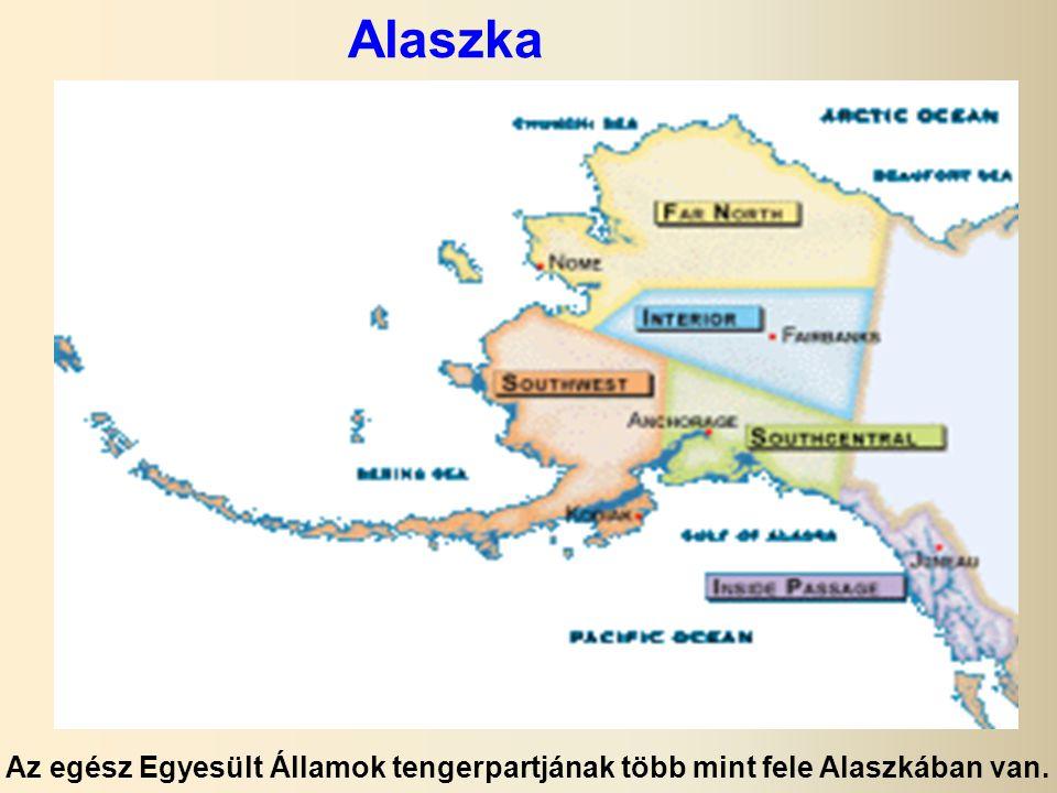 Alaszka Az egész Egyesült Államok tengerpartjának több mint fele Alaszkában van.