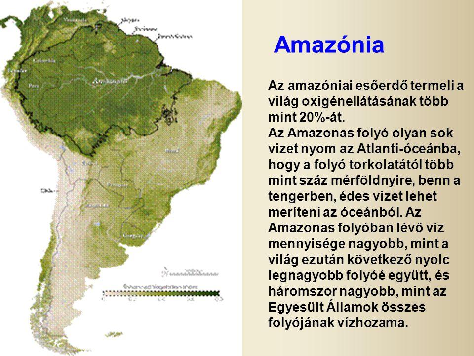 Amazónia Az amazóniai esőerdő termeli a világ oxigénellátásának több mint 20%-át.