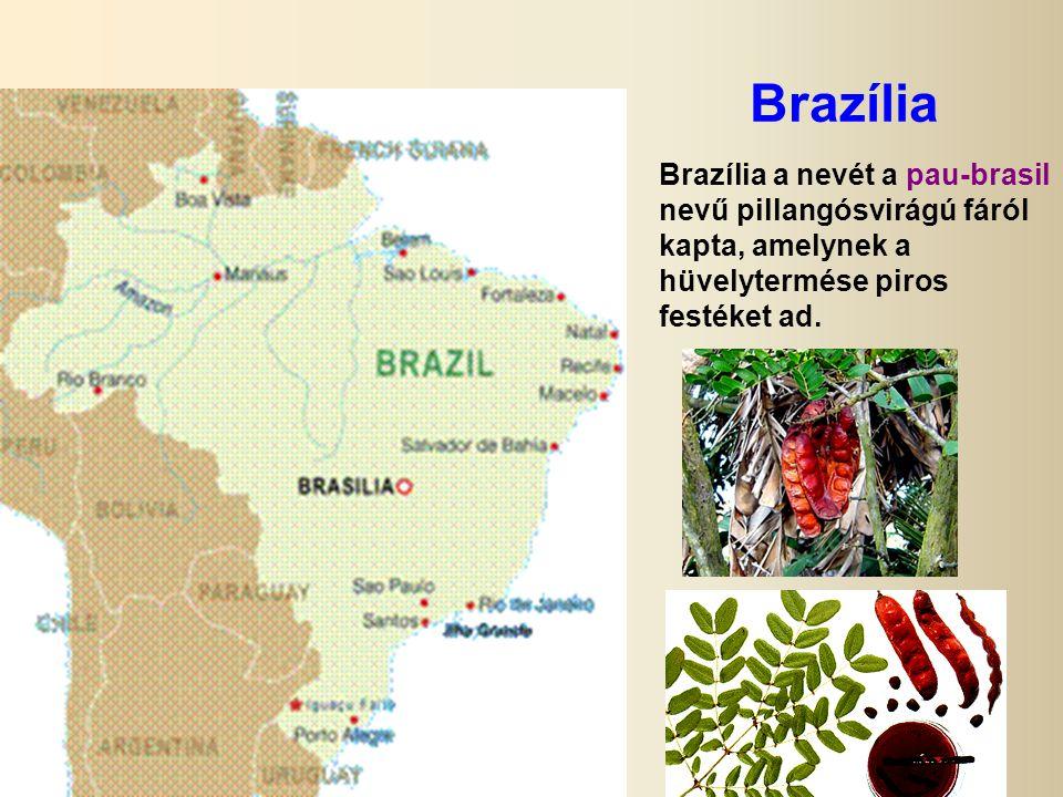 Brazília Brazília a nevét a pau-brasil nevű pillangósvirágú fáról kapta, amelynek a hüvelytermése piros festéket ad.