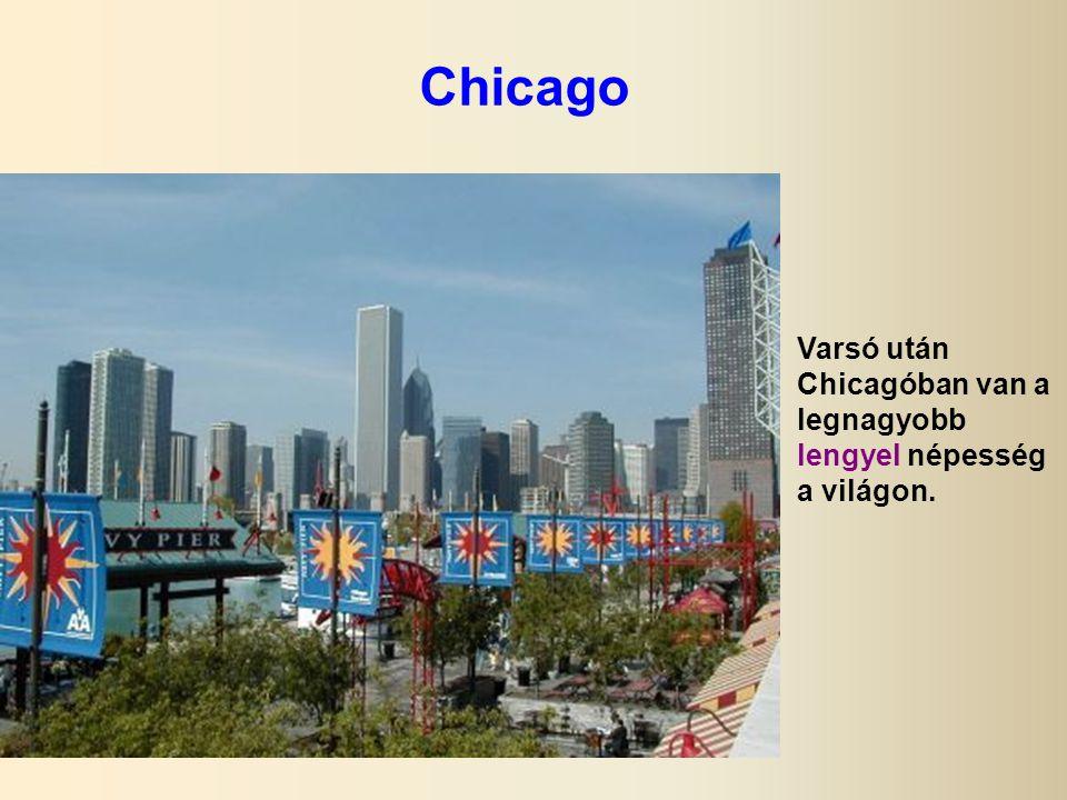 Chicago Varsó után Chicagóban van a legnagyobb lengyel népesség a világon.