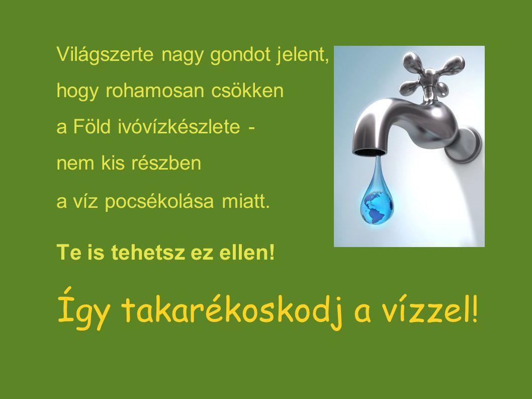 Így takarékoskodj a vízzel! Világszerte nagy gondot jelent, hogy rohamosan csökken a Föld ivóvízkészlete - nem kis részben a víz pocsékolása miatt. Te