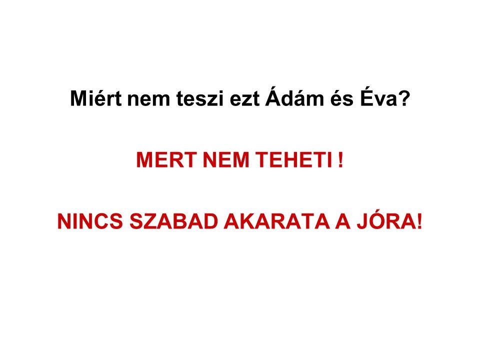 Miért nem teszi ezt Ádám és Éva? MERT NEM TEHETI ! NINCS SZABAD AKARATA A JÓRA!