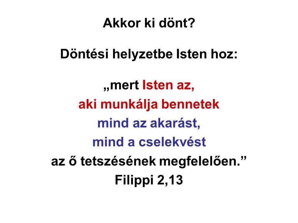 """Akkor ki dönt? Döntési helyzetbe Isten hoz: """"mert Isten az, aki munkálja bennetek mind az akarást, mind a cselekvést az ő tetszésének megfelelően."""" Fi"""