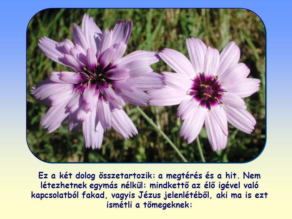 S rögtön megmutatja az utat is: térjünk meg, és higgyünk az evangéliumban, azaz gyökeresen változtassuk meg az életünket, és fogadjuk be Jézusban azt