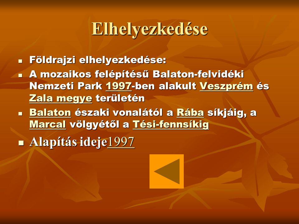 Elhelyezkedése Földrajzi elhelyezkedése: Földrajzi elhelyezkedése: A mozaikos felépítésű Balaton-felvidéki Nemzeti Park 1997-ben alakult Veszprém és Zala megye területén A mozaikos felépítésű Balaton-felvidéki Nemzeti Park 1997-ben alakult Veszprém és Zala megye területén1997Veszprém Zala megye1997Veszprém Zala megye Balaton északi vonalától a Rába síkjáig, a Marcal völgyétől a Tési-fennsíkig Balaton északi vonalától a Rába síkjáig, a Marcal völgyétől a Tési-fennsíkig BalatonRába MarcalTési-fennsíkig BalatonRába MarcalTési-fennsíkig Alapítás ideje1997 Alapítás ideje19971997