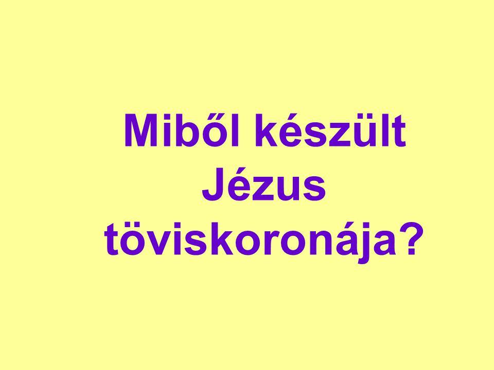 Miből készült Jézus töviskoronája?