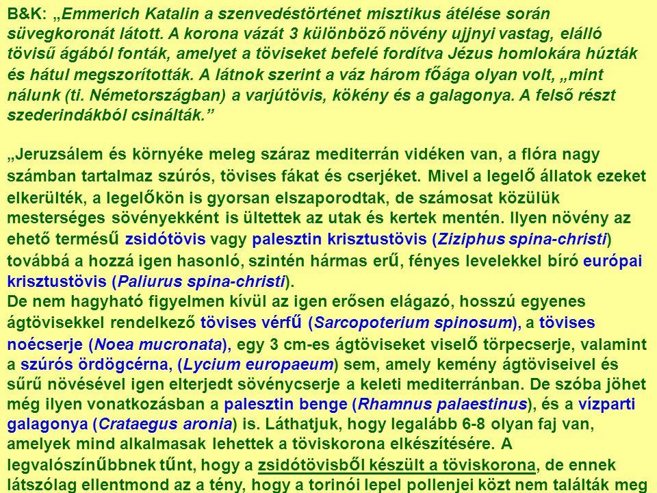 """B&K: """"Emmerich Katalin a szenvedéstörténet misztikus átélése során süvegkoronát látott. A korona vázát 3 különböző növény ujjnyi vastag, elálló tövisű"""