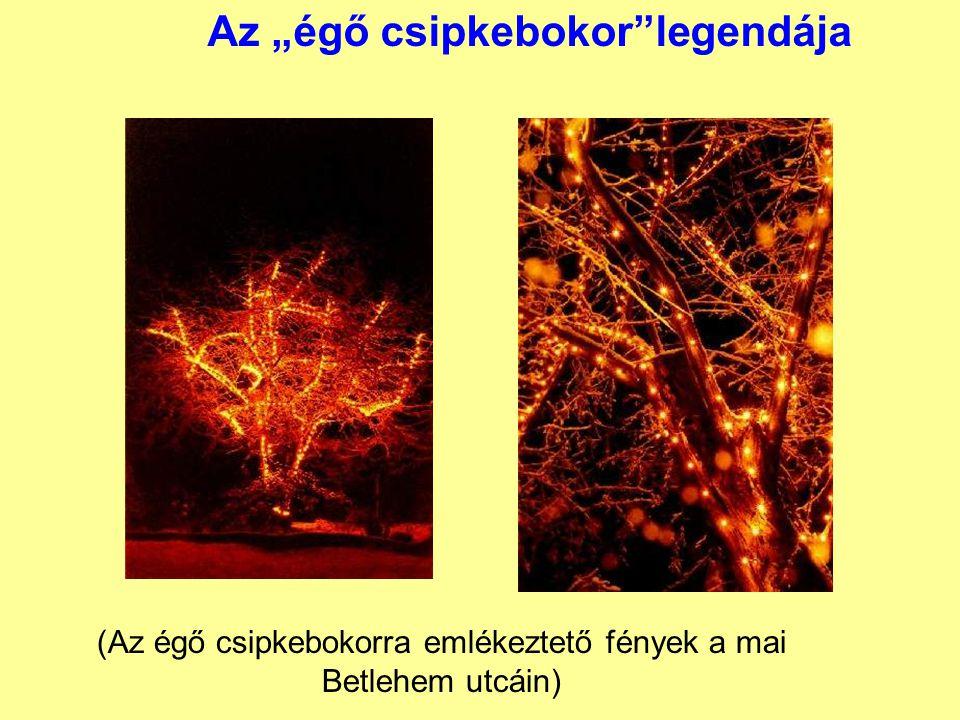 """Az """"égő csipkebokor""""legendája (Az égő csipkebokorra emlékeztető fények a mai Betlehem utcáin)"""