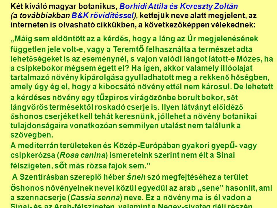 Két kiváló magyar botanikus, Borhidi Attila és Kereszty Zoltán (a továbbiakban B&K rövidítéssel), kettejük neve alatt megjelent, az interneten is olva