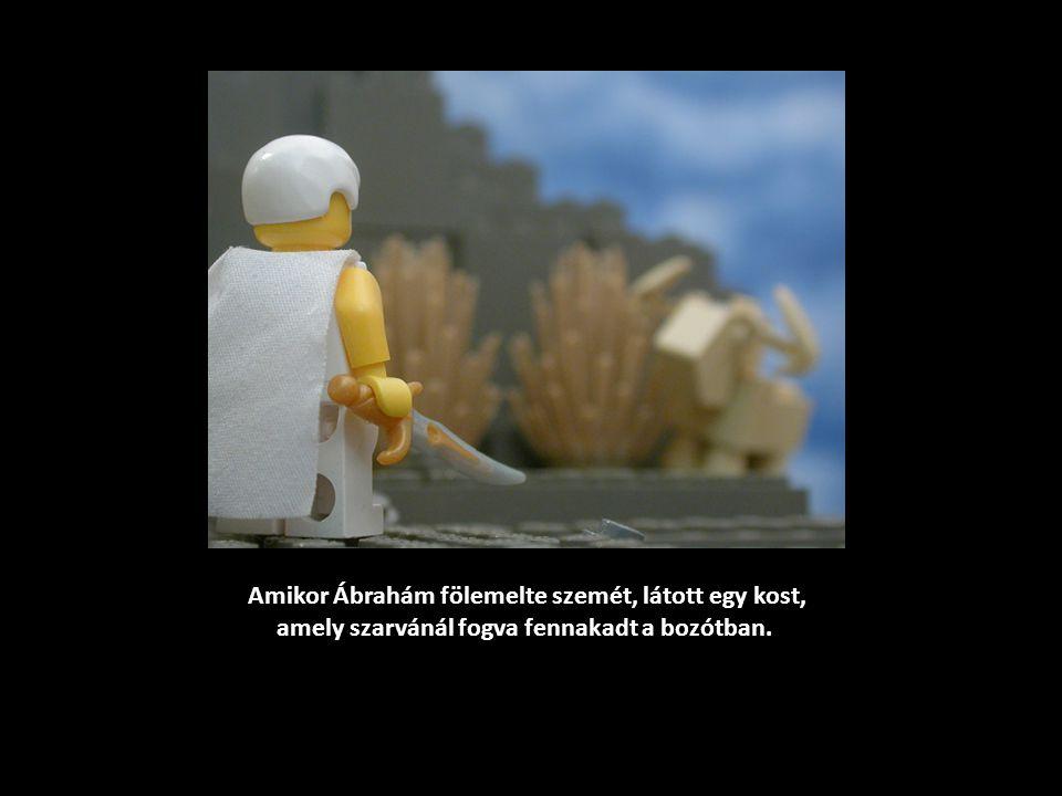 Amikor Ábrahám fölemelte szemét, látott egy kost, amely szarvánál fogva fennakadt a bozótban.