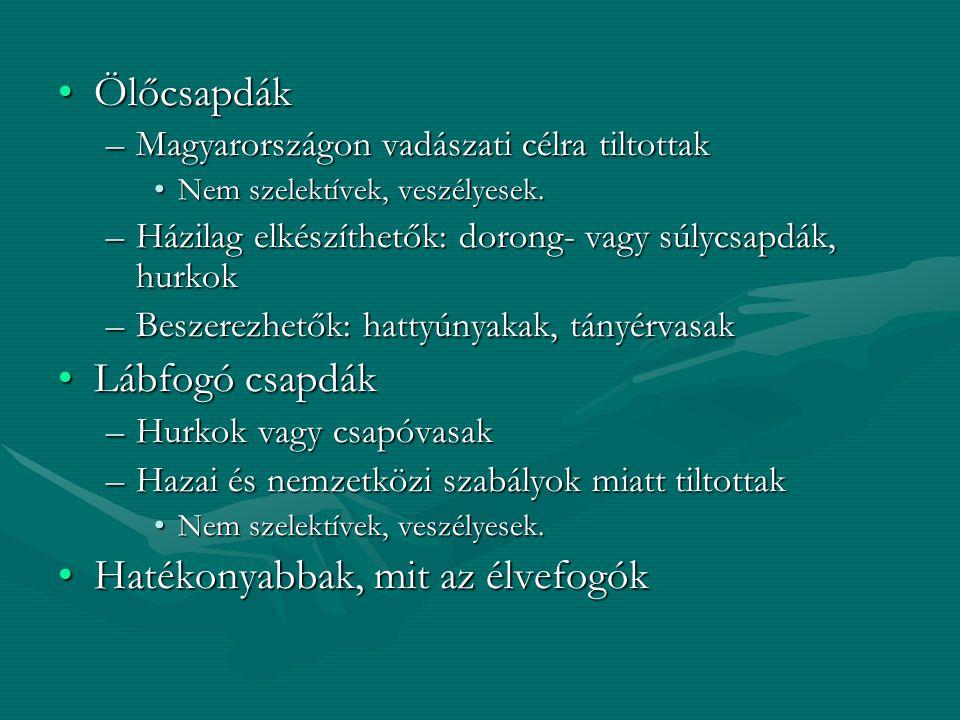 ÖlőcsapdákÖlőcsapdák –Magyarországon vadászati célra tiltottak Nem szelektívek, veszélyesek.Nem szelektívek, veszélyesek. –Házilag elkészíthetők: doro