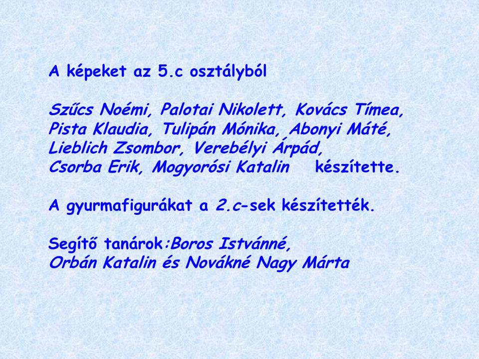 A képeket az 5.c osztályból Szűcs Noémi, Palotai Nikolett, Kovács Tímea, Pista Klaudia, Tulipán Mónika, Abonyi Máté, Lieblich Zsombor, Verebélyi Árpád, Csorba Erik, Mogyorósi Katalin készítette.