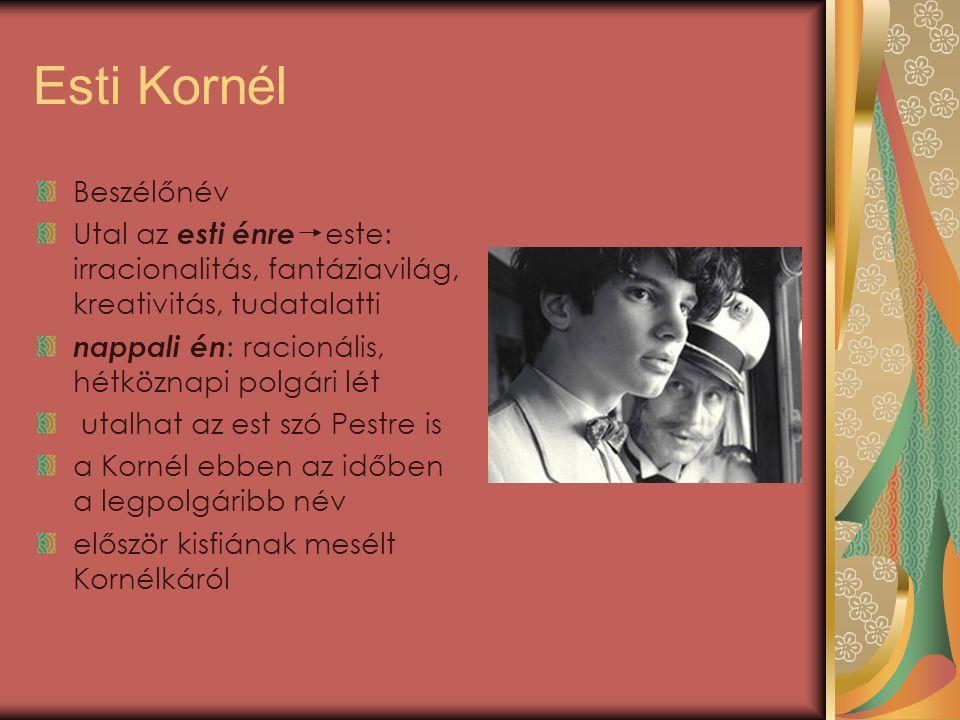 Esti Kornél lazán szőtt novellafüzér a művek közös vonása: a főszereplő, akit szoktak az író alteregójaként, ki nem mondott vágyaiként értelmezni