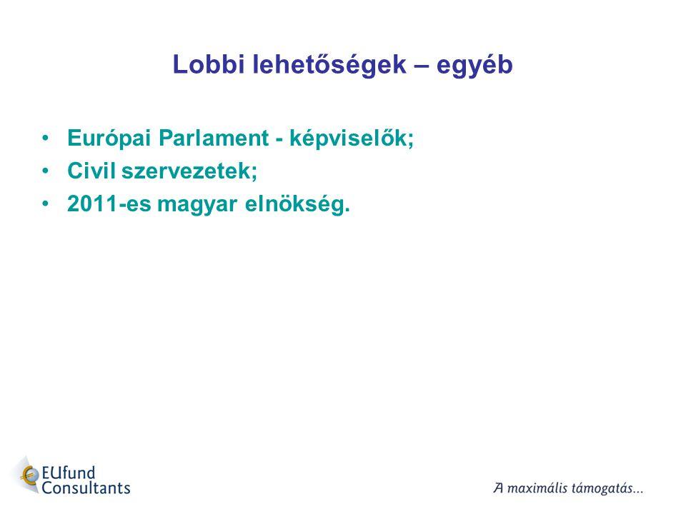 Lobbi lehetőségek – egyéb Európai Parlament - képviselők; Civil szervezetek; 2011-es magyar elnökség.