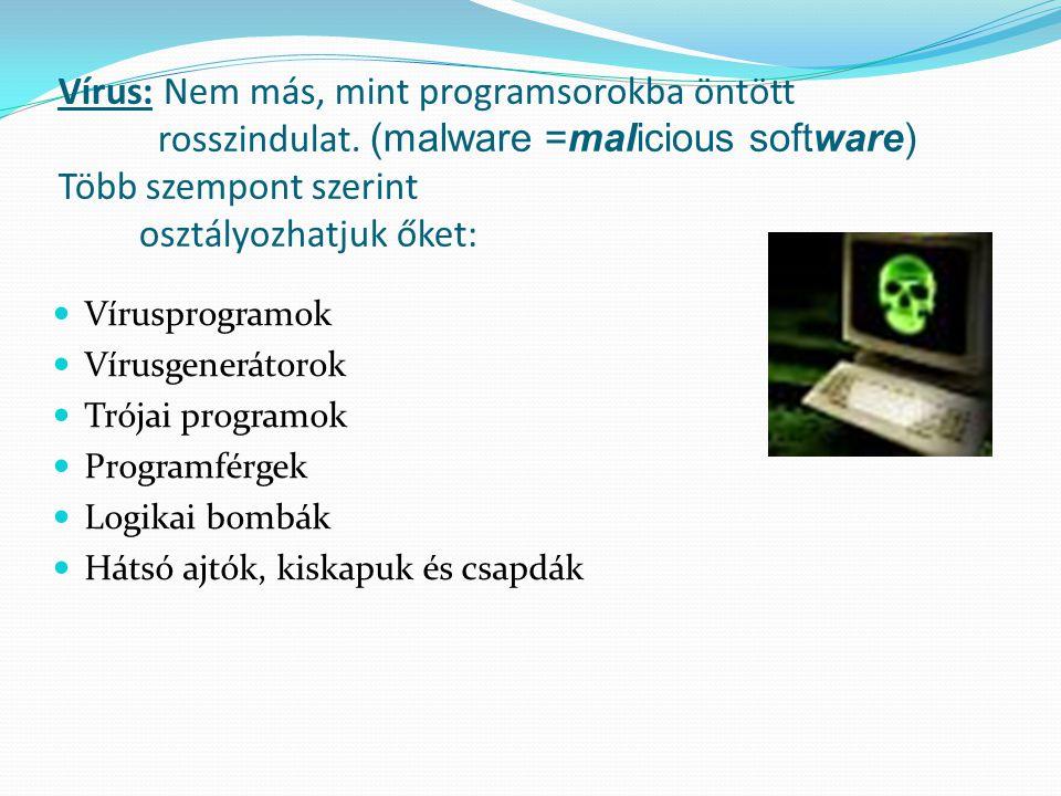 Vírus: Nem más, mint programsorokba öntött rosszindulat.