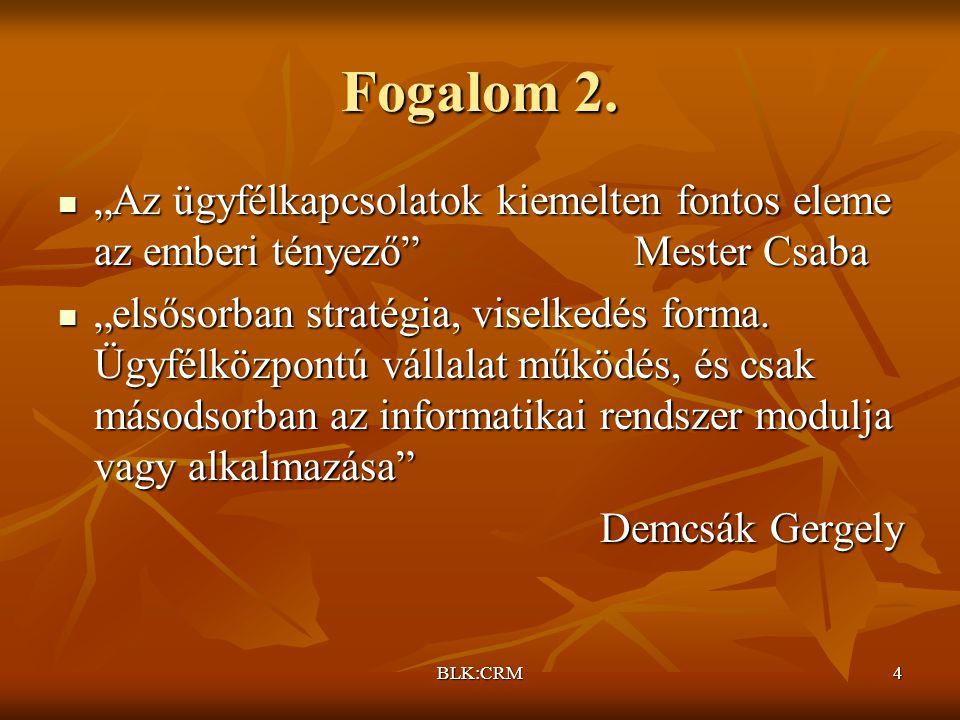 BLK:CRM4 Fogalom 2.