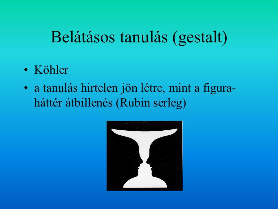 Belátásos tanulás (gestalt) Köhler a tanulás hirtelen jön létre, mint a figura- háttér átbillenés (Rubin serleg)