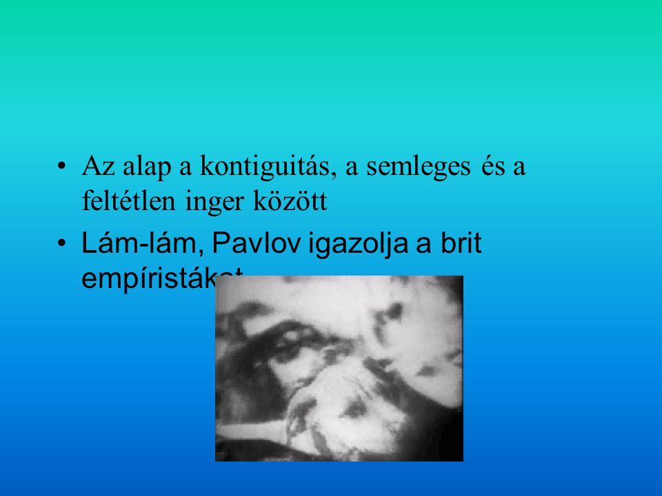 Az alap a kontiguitás, a semleges és a feltétlen inger között Lám-lám, Pavlov igazolja a brit empíristákat