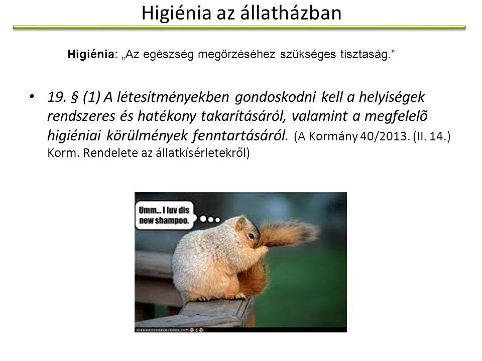 """A fertőtlenítés Dezinfekció (""""fertőtlenítés ): A.a környezetbe került kórokozók elpusztítása, fertőzőképességgük megszüntetése."""
