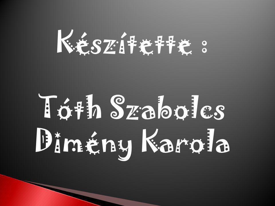 Készítette : Tóth Szabolcs Dimény Karola