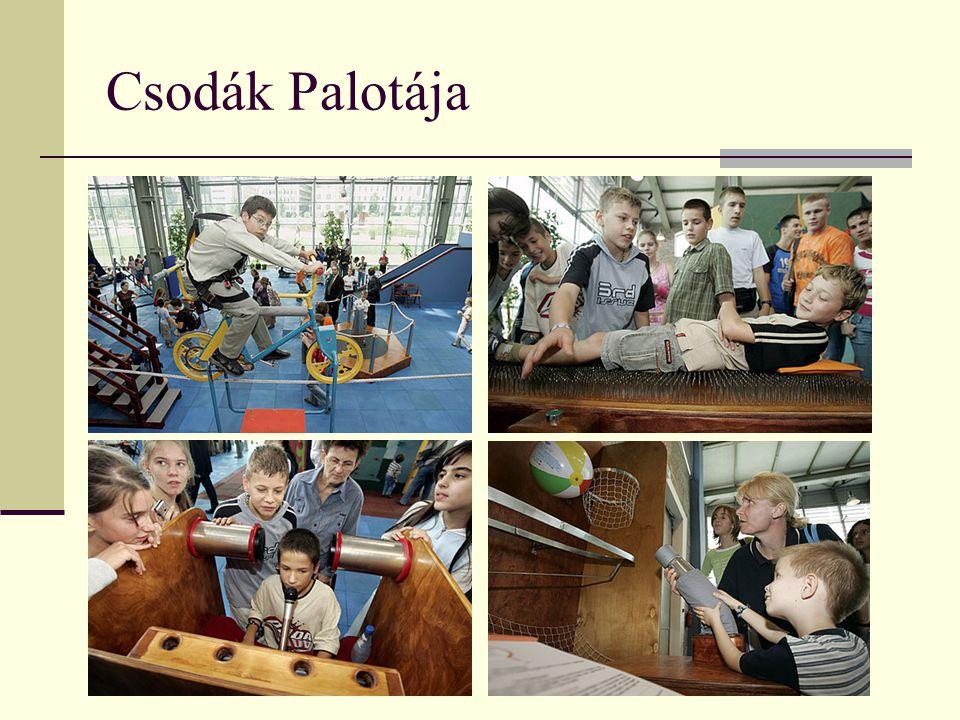 Cél: a természettudományokat a legérdekesebb oldalukról mutassa be, szerettesse meg a látványosságra mindig fogékony gyerekekkel 1993 Interaktív Tudományos Játszóház 1994: Kreatívitás – egyetemeken (márc-ápr) 1994 nov: BSCA: állandó kiállítás 1996 -2005 Váci út HÉTKÖZNAPI MÁGIÁK ILLÚZIÓK PRÓBÁLD KI MAGAD.