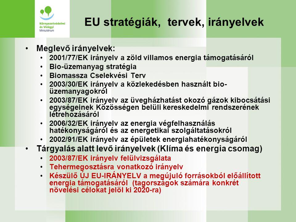 EU stratégiák, tervek, irányelvek Meglevő irányelvek: 2001/77/EK irányelv a zöld villamos energia támogatásáról Bio-üzemanyag stratégia Biomassza Csel