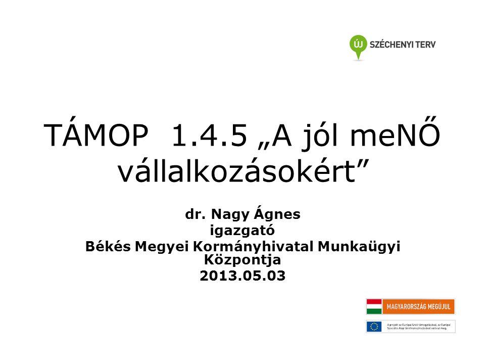 """TÁMOP 1.4.5 """"A jól meNŐ vállalkozásokért dr."""