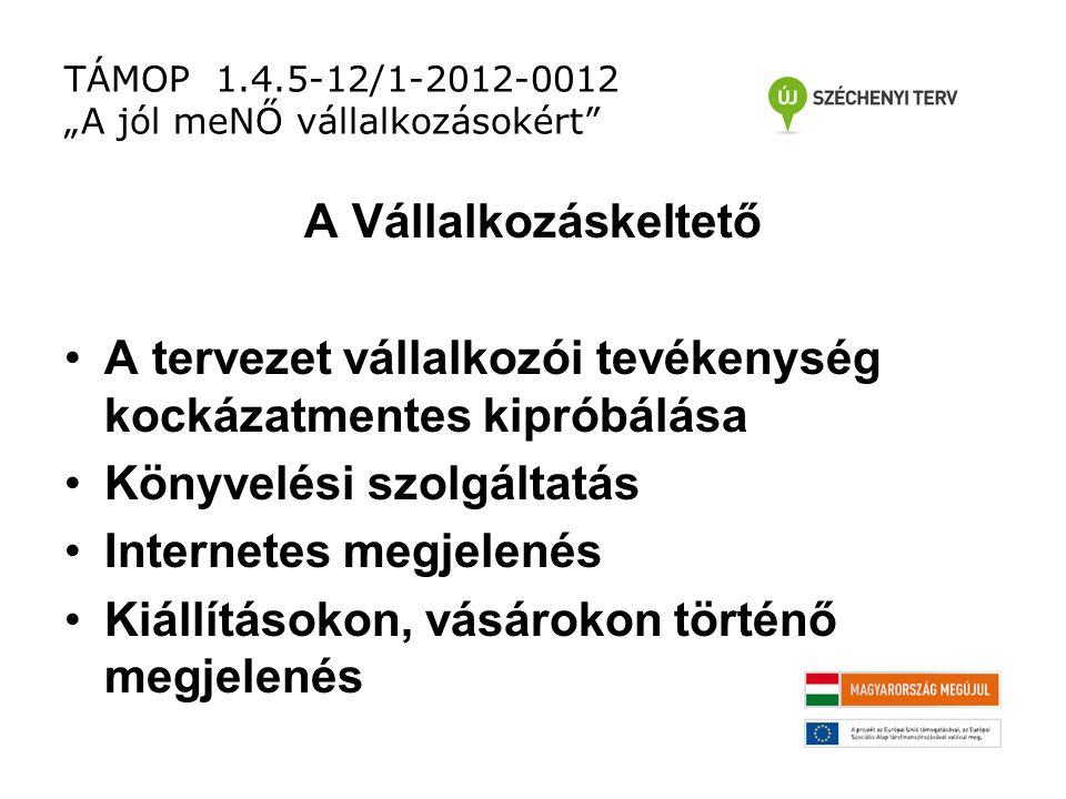 """TÁMOP 1.4.5-12/1-2012-0012 """"A jól meNŐ vállalkozásokért A Vállalkozáskeltető A tervezet vállalkozói tevékenység kockázatmentes kipróbálása Könyvelési szolgáltatás Internetes megjelenés Kiállításokon, vásárokon történő megjelenés"""