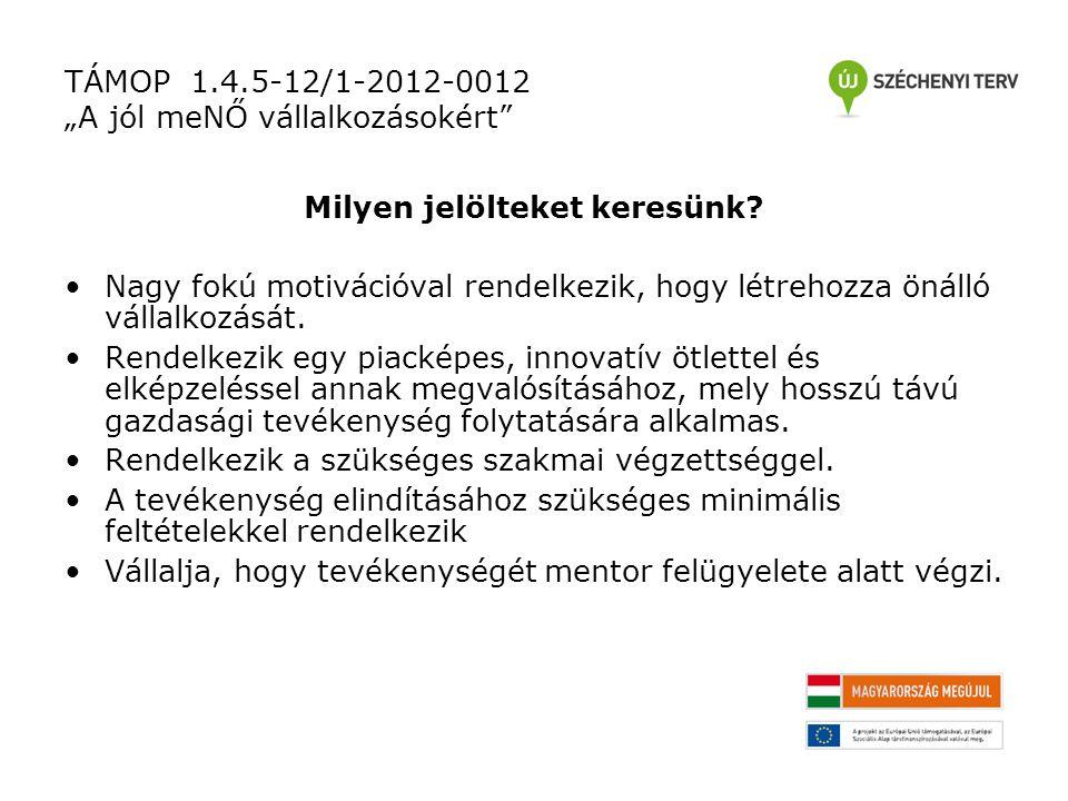 """TÁMOP 1.4.5-12/1-2012-0012 """"A jól meNŐ vállalkozásokért Milyen jelölteket keresünk."""