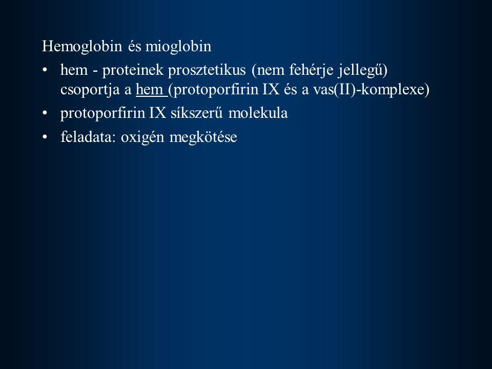 Hemoglobin és mioglobin hem - proteinek prosztetikus (nem fehérje jellegű) csoportja a hem (protoporfirin IX és a vas(II)-komplexe) protoporfirin IX síkszerű molekula feladata: oxigén megkötése