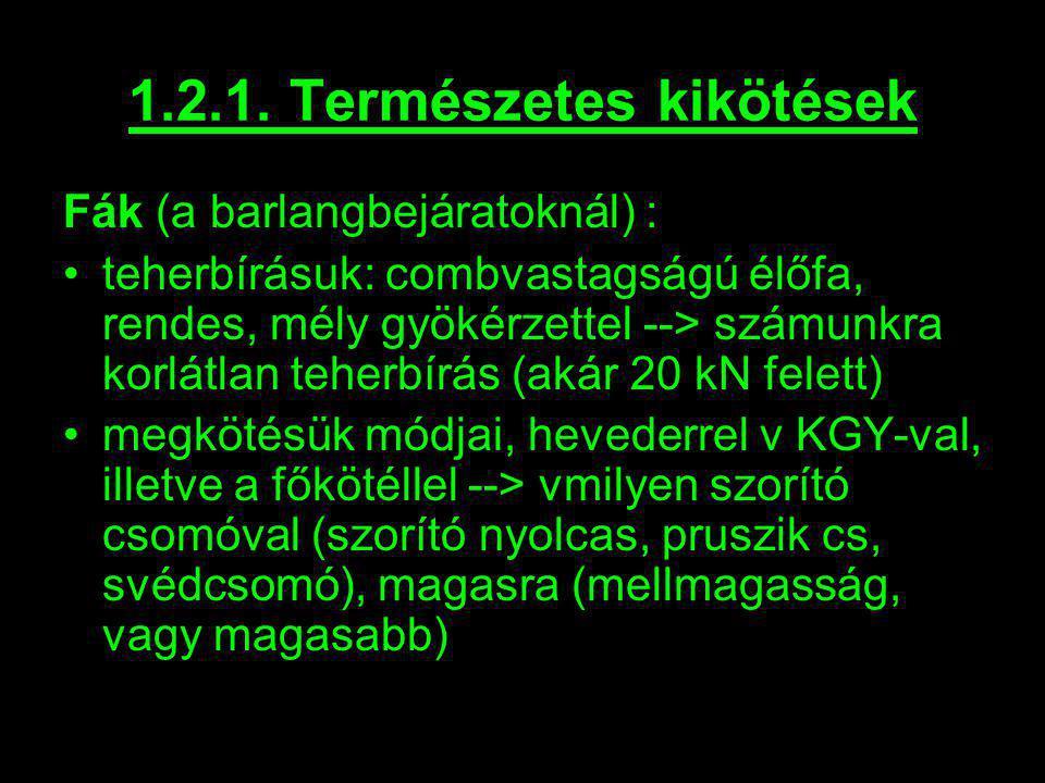 1.2.1. Természetes kikötések Fák (a barlangbejáratoknál) : teherbírásuk: combvastagságú élőfa, rendes, mély gyökérzettel --> számunkra korlátlan teher