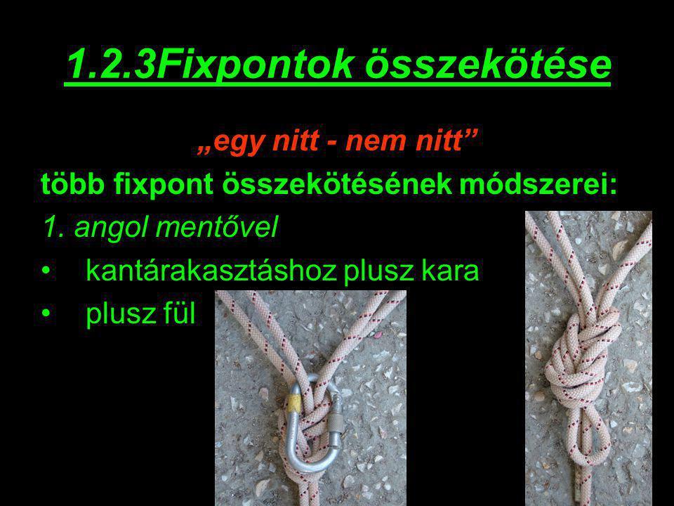 """1.2.3Fixpontok összekötése """"egy nitt - nem nitt"""" több fixpont összekötésének módszerei: 1. angol mentővel kantárakasztáshoz plusz kara plusz fül"""