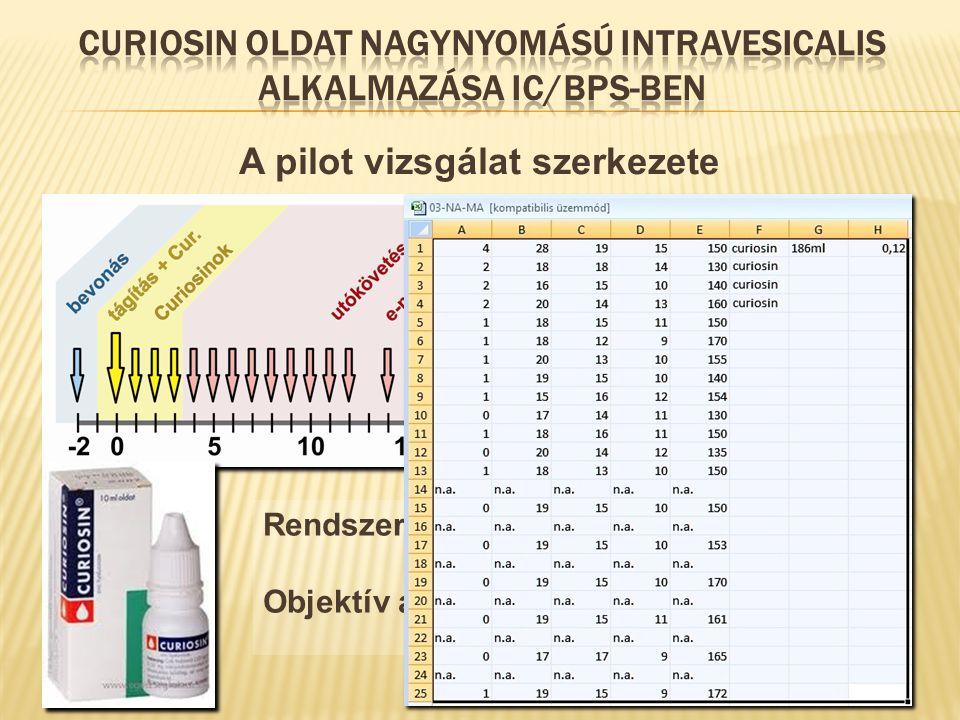 A pilot vizsgálat szerkezete 10 bevont beteg - végül 8 volt értékelhető Fél évi utánkövetés Rendszeres adatküldések email-ben Objektív adatok összesít